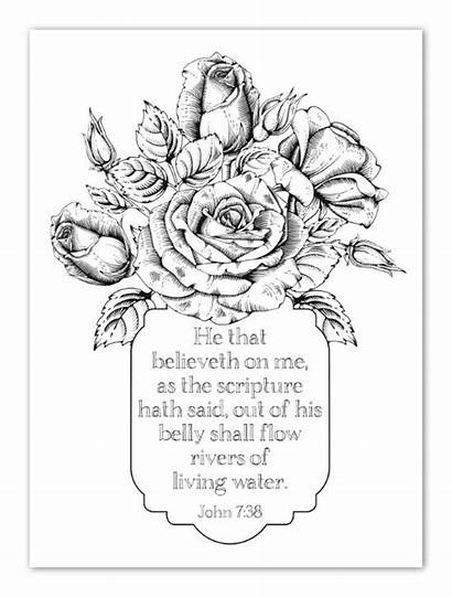 Coloring Bible Pages Study Sheets Adult Faith
