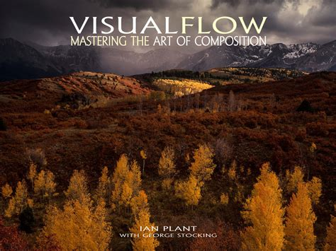visual flow mastering  art  composition