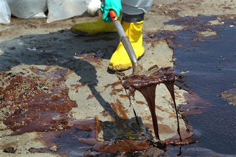 Experts Answer Your Questions About Oil Spill The