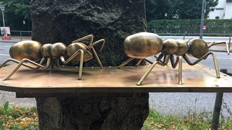 was sind ameisen die bronze ameisen sind zur 252 ck ndr de nachrichten hamburg
