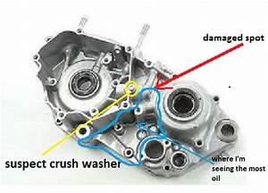 Yz250  Help Me Find This Oil Leak   Race Shop