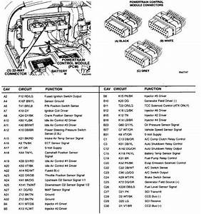 You Are Right  Here Is A Layout Of The Pcm Connector  Run