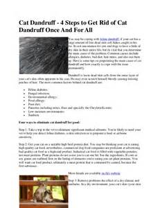 how to get rid of cat dandruff cat dandruff 4 steps to get rid of cat dandruff once and