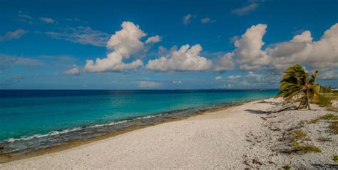 Pink Beach - Bonaire Official Tourism Site