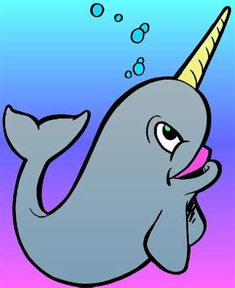 Narwhal Clipart Narwhals Clip Clipart Panda Free Clipart Images