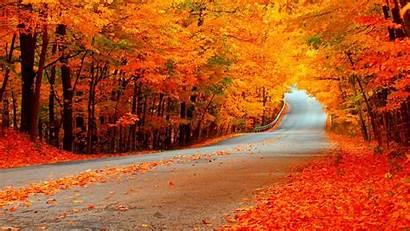 Fall Widescreen Desktop Backgrounds Harvest Background Wallpapers