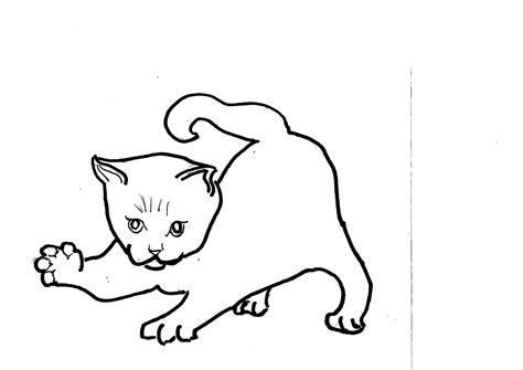 colora disegni bambini disegni da colorare dei gatti migliori pagine da colorare