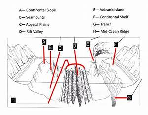 Geologic Landforms Of The Ocean Floor