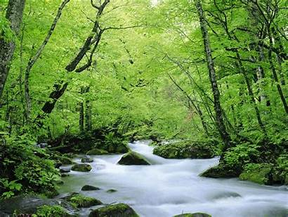 Nature Wallpapers Desktop Backgrounds Natural Amazing Pretty