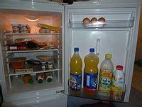 frigorifero wikiquote