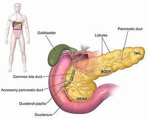 Tumor alvleesklier