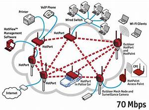 Busy Ant  Mesh Networks