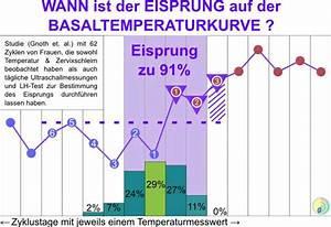 Ssw Berechnen Nach Eisprung : wann ist der eisprung ~ Themetempest.com Abrechnung