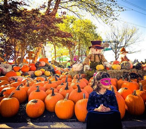 Cincinnati Halloween Events for Kids - Family Friendly ...