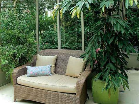 plante verte pour chambre a coucher protéger les plantes de la véranda en hiver