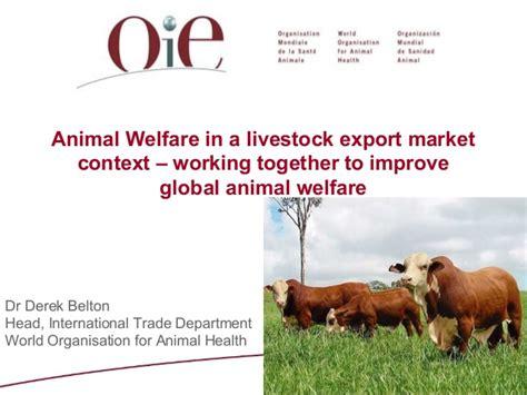 livexchange conference  animal welfare session dr