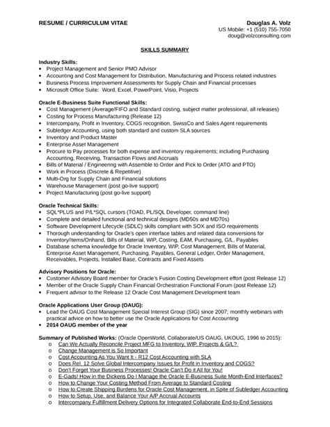 executive business process analyst resume template page 2