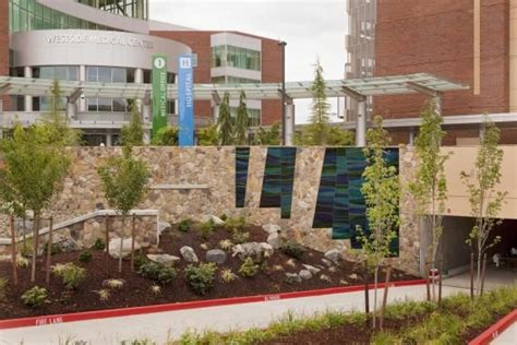 39 best images about healthcare spaces healing gardens