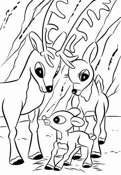 Rudolph Coloring Pages Reindeer Nosed Christmas Sheets