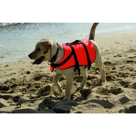 schwimmweste fuer hunde kaufen im awn  shop