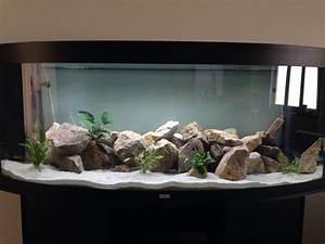 Ide Dcoration Naturelle Et Aquarium Plus Utilis
