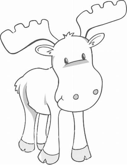 Coloring Pages Moose Printable Animal Sheet Sheets
