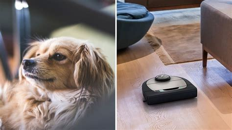 the best robot vacuums for pet hair of 2019 reviewed vacuums