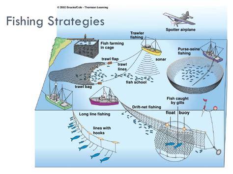 overfishing aquaculture