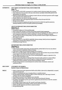 enchanting government relations resume examples frieze With government relations resume