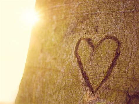 gruende warum wir nie den glauben  die liebe verlieren