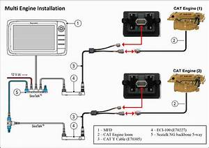 Collection Of Raymarine Seatalk Wiring Diagram Download