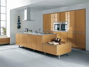 bien choisir la couleur de sa cuisine inspiration With couleur pour mur salon 14 la cuisine noire inspiration cuisine