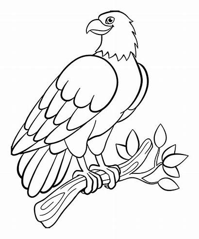Birds Coloring Pages Children Printable Animals Justcolor