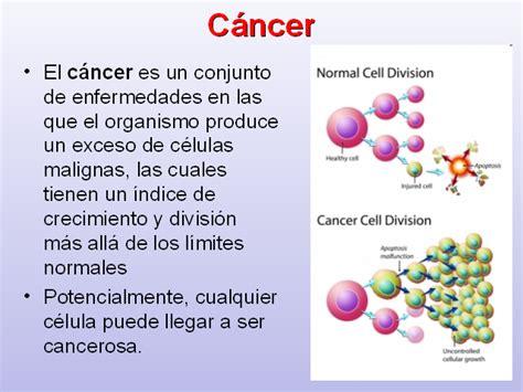 q es el cancer en general ciclo celular y c 225 ncer