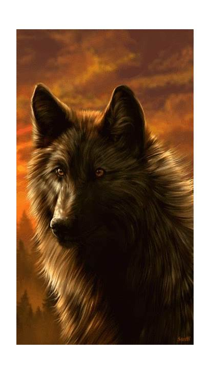 Wolf Fantasy Wolves Animated Google Animal Lobos