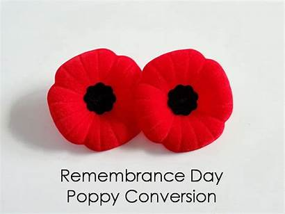 Poppy Remembrance Flower Quotes Diy Wishes Greetings