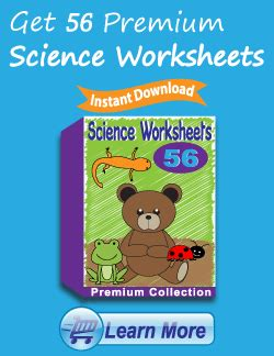 kindergarten science worksheets learning  basics