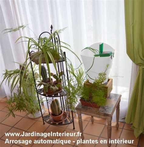 arrosage automatique plante interieur arroseur automatique 224 piles pour les vacances le test jardinage int 233 rieur fr le