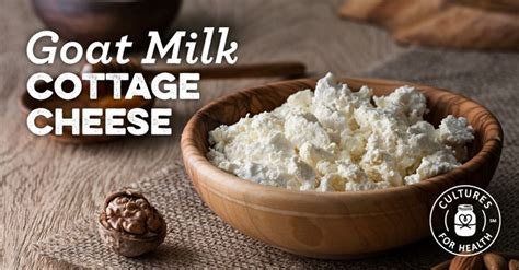 goat milk cottage cheese 65 best images about goat s milk recipes on