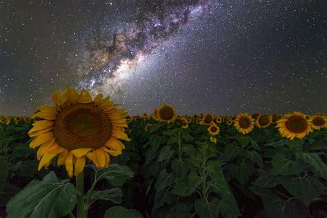 Stars Galaxy Night Sky Australia Space