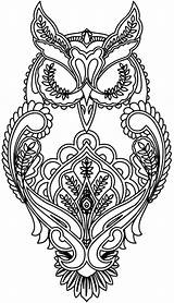 Coloring Adults Animal Owl sketch template