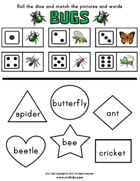 bugs activities games  worksheets  kids