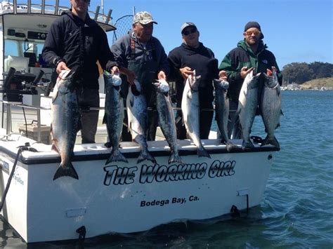 Bodega Bay Fishing Boats by 30 Best Norcal Sportfishing Adventures Images On