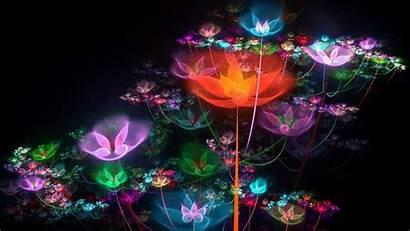 Neon Colorful Flowers Bright Wallpapers Sparkles Desktop