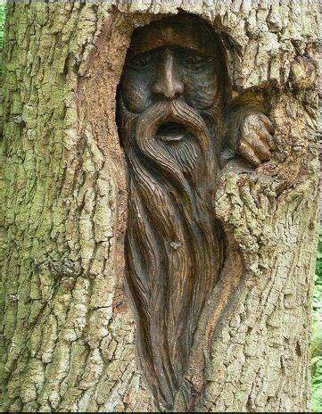 pin  sherii  alexander  art education tree
