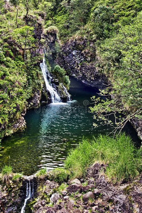 Ask us what our #1 favorite road to hana stop, and this is it. Hana Highway Waterfall stock image. Image of hawaii ...