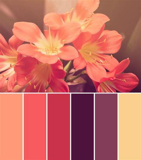 coral color scheme best 25 coral color schemes ideas on