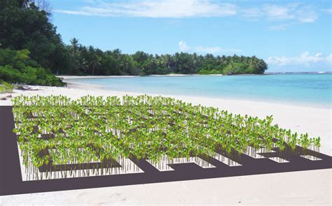 Giant barcode on Tuvalu to raise awareness about climate ...