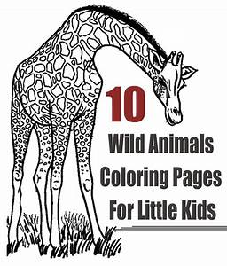 Top 25 Free Printable Wild Animals Coloring Pages Online ...