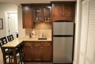 Outdoor Mini Fridge Cabinet by Custom Basement With Barreled Ceiling Traditional